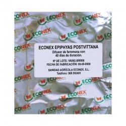 ECONEX EPIPHYAS POSTVITTANA