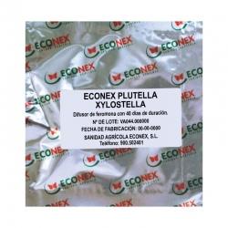 ECONEX PLUTELLA XYLOSTELLA
