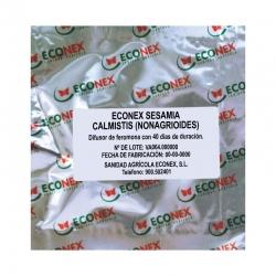 ECONEX SESAMIA CALMISTIS (NONAGRIOIDES)