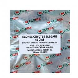 ECONEX ORYCTES ELEGANS 60 DÍAS