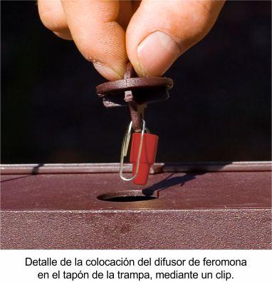 colocacion-del-difusor-60-dias1.jpg